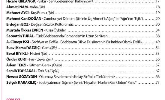 subat2014icindekiler
